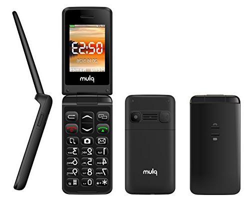 Plum Flipper - Unlocked GSM Flip Phone Screen FM Radio Light Straight -